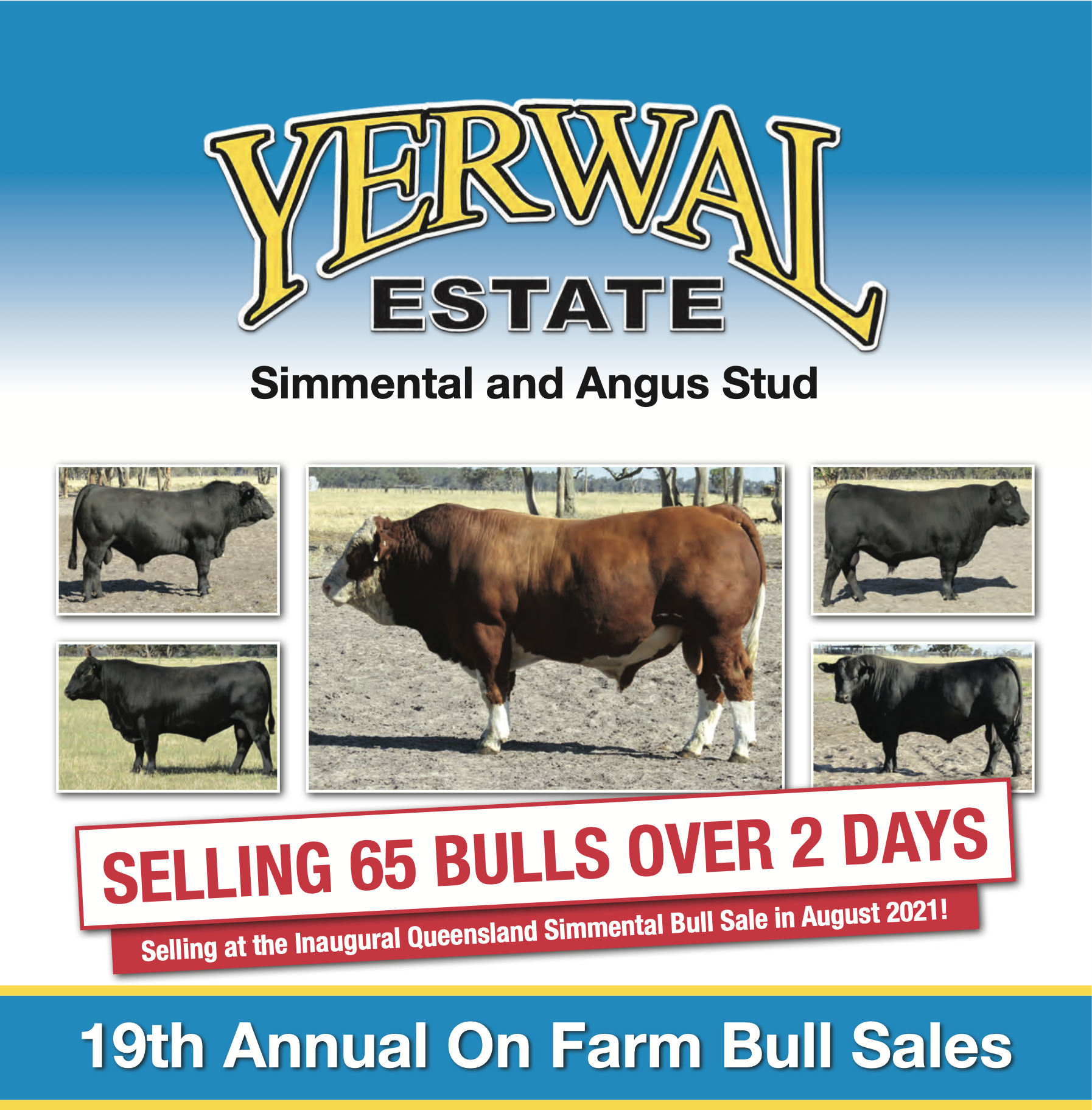 Yerwal Estate Bull Sale Catalogue