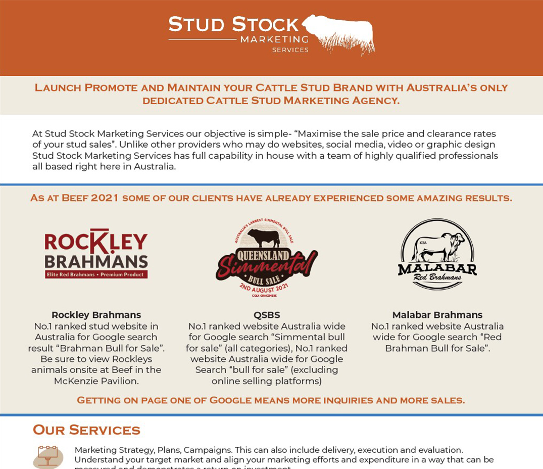 Launch Promote and Maintain your Cattle Stud Brand with Australia's only dedicated Cattle Stud Marketing Agency